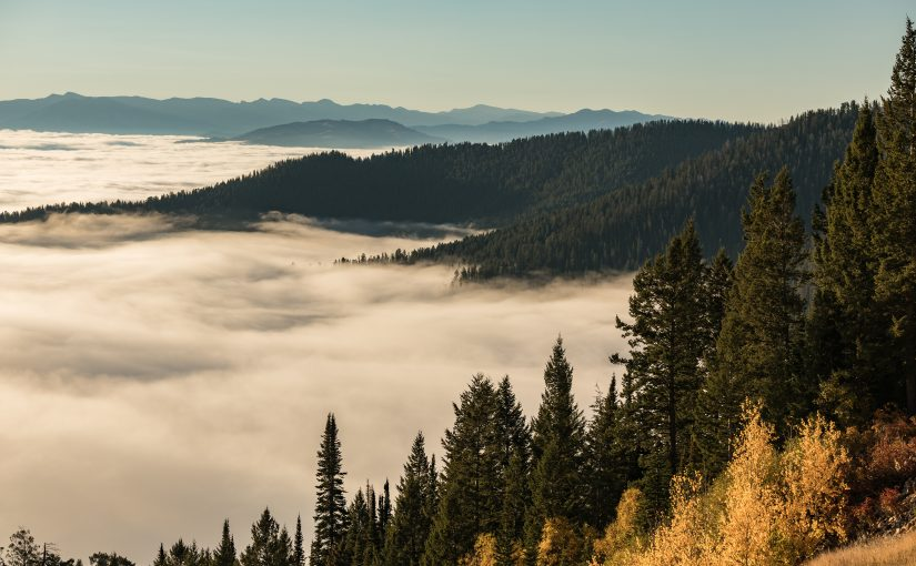 Jackson Hole Inversion