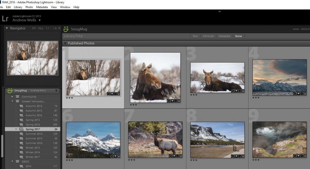 Photography Workflow Part 4 – Sharing, Printing, and